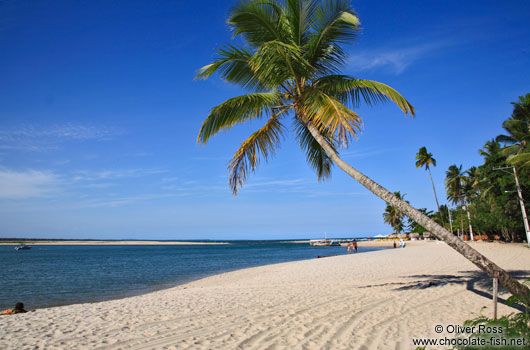 Beach Island Pictures on Boipeba Island Beach