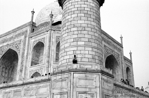 Facade Detail of the Taj Mahal Mausoleum in Agra