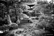 Travel photography:Kyoto Temple, Japan