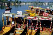 Parked water taxis on Dal Lake in Srinagar, India