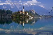 Island with church and Bled Castle reflected in Blejsko jezero (Bled lake) with the Slovenian Alps in the background, Slovenia