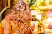 Travel photography:Buddhist monks chanting at Bangkok´s Wat Chana Songkram, Thailand