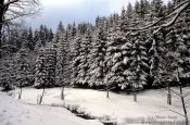 Travel photography:Winter landscape, Germany