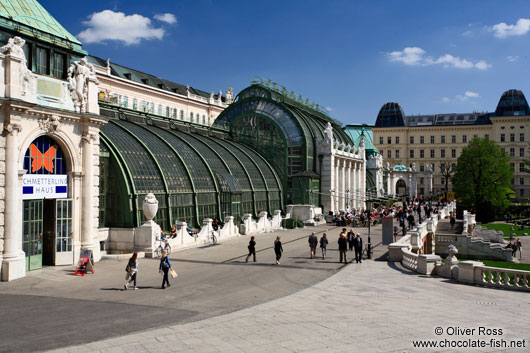 The Palm and Butterfly house in Vienna´s Burggarten