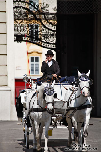 A Fiaker (horse cart for tourists) in Vienna´s  Hofburg