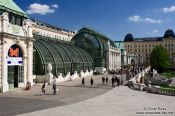 Travel photography:The Palm and Butterfly house in Vienna´s Burggarten, Austria