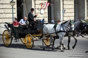 Travel photography:A Fiaker (horse cart for tourists) in Vienna´s  Hofburg, Austria