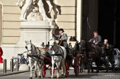 Travel photography:Fiakers (horse carts for tourists) entering Vienna´s  Hofburg, Austria