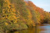 Travel photography:Trees along the Schwentine river near Kiel, Germany