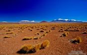 Travel photography:The Altiplano, Bolivia