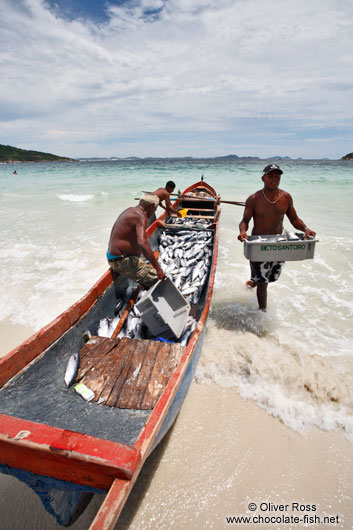Fishermen landing their catch of bonito fish at Arraial-do-Cabo beach