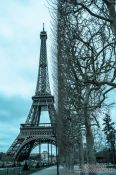 Travel photography:Cyanotype image of the Paris Eiffel Tower , France