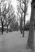 Travel photography:Eiffel Tower and Park in Paris, France