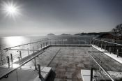 Travel photography:Jangsado Sea Park Camellia Island 2, South Korea