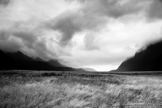 Landscape in Fiordland National Park
