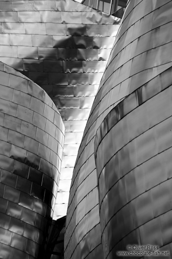 Facade detail of the Bilbao Guggenheim Museum