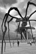 Travel photography:Spider outside the Bilbao Guggenheim Museum, Spain