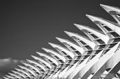 Travel photography:Roof detail of the Science Museum (El Museu de les Ciències Príncipe Felipe) in the Ciudad de las artes y ciencias in Valencia, Spain