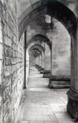 Travel photography:Winchester Cathedral Cloister, United Kingdom