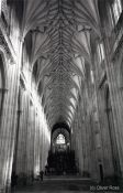 Travel photography:Winchester Cathedral, United Kingdom