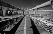 Travel photography:New York Brooklyn Bridge cables, USA