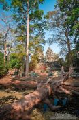 Travel photography:Moat and trees surrounding Banteay Kdei , Cambodia