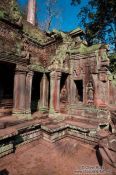 Travel photography:Ta Prom temple, Cambodia