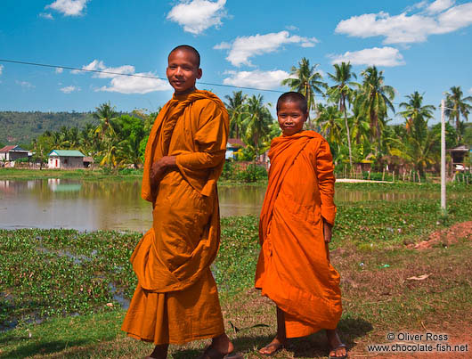 Two buddhist monk novices along the road between Sihanoukville and Kampott