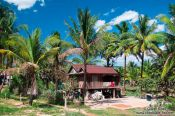Travel photography:Typical stilt house between Sihanoukville and Kampott , Cambodia