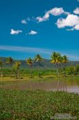 Travel photography:Landscape between Sihanoukville and Kampott , Cambodia