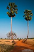 Travel photography:Road in the countryside near Odonk (Udong), Cambodia