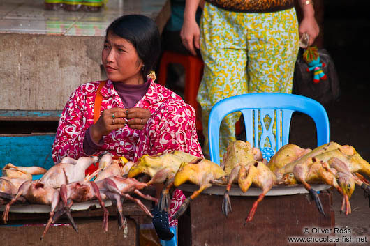Selling chicken and ducks at Battambang´s central market