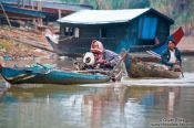 Travel photography:Boats near Battambang, Cambodia