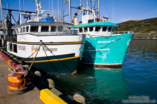 Fishing boats in St. John´s harbour