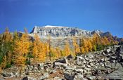 Travel photography:Mountains near Lake Louise, Canada