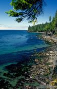 Travel photography:View from Juan de Fuca Trail, Vancouver Island, Canada