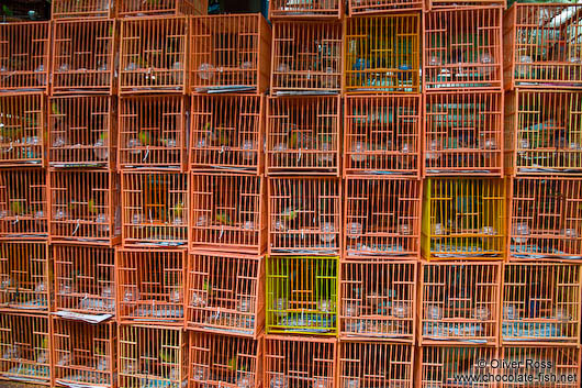 Cages at Hong Kong bird market
