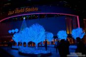 Travel photography:Trees with blue lighting at Hong Kong´s New World Centre, China