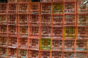 Travel photography:Cages at Hong Kong bird market , China