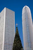 Travel photography:Hong Kong high rises with Christmas tree, China