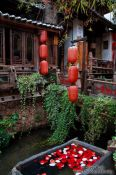 Travel photography:Rose petals in a water trough in Lijiang´s old town , China