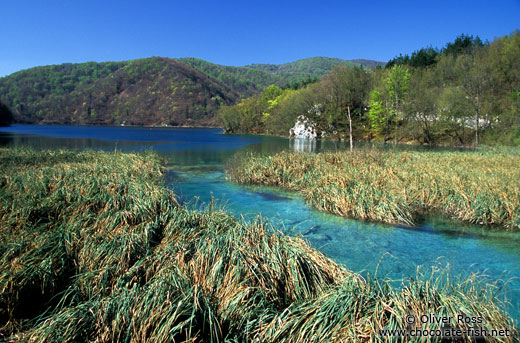 Lake and river landscape in Plitvice (Plitvicka) National Park