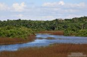 Travel photography:Estuary near Rancho Luna, south of Cienfuegos, Cuba