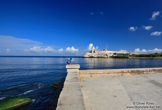 Havana bay with lighthouse and castle