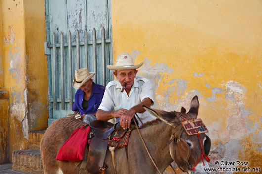 Trinidad man with donkey