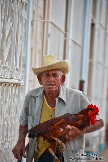 Old man with rooster in Trinidad