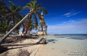 Travel photography:Palm trees with lighthouse at Cayo-Jutías beach, Cuba