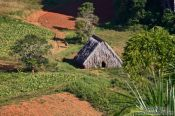 Travel photography:Small hut to dry the tobacco near Viñales, Cuba