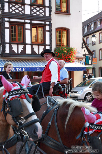 Man in traditional dress on a horse cart in Obernai