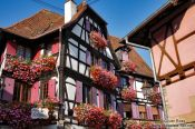 "Travel photography:House ""Zum Schnogaloch"" in Obernai, France"